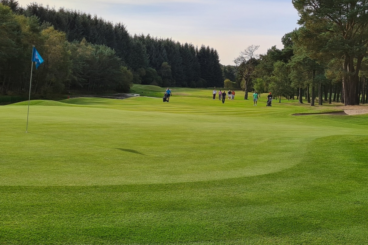Hawkshill 13th from the green