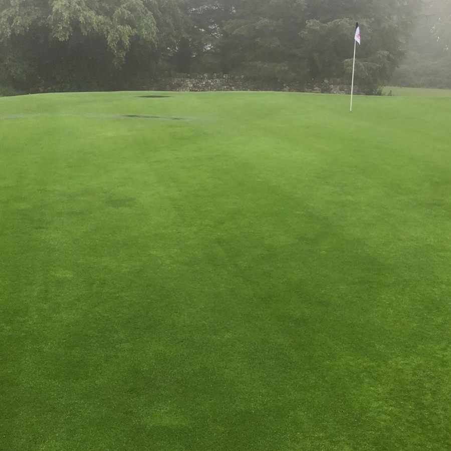 a few puddles but the greens held