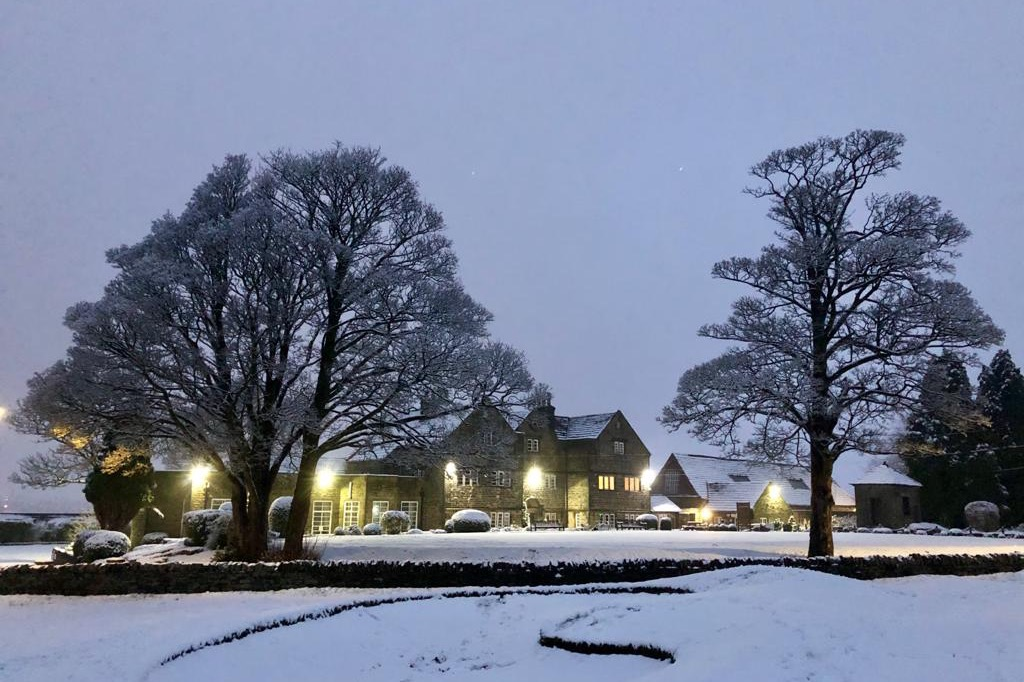 Hallowes in the snow