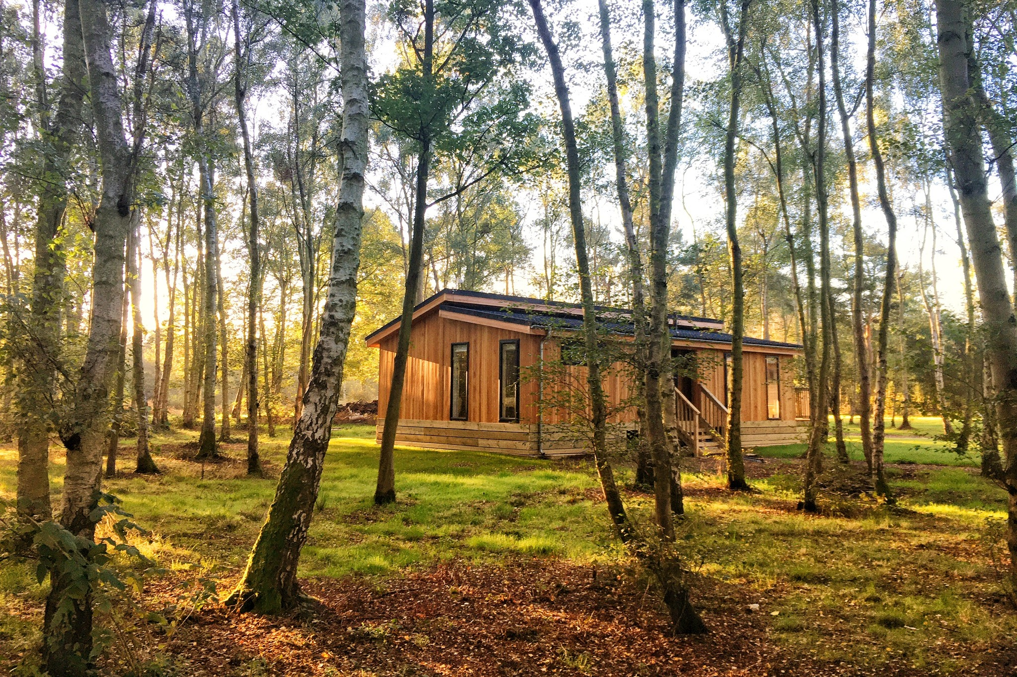 Stay in our Luxury Woodland Lodges