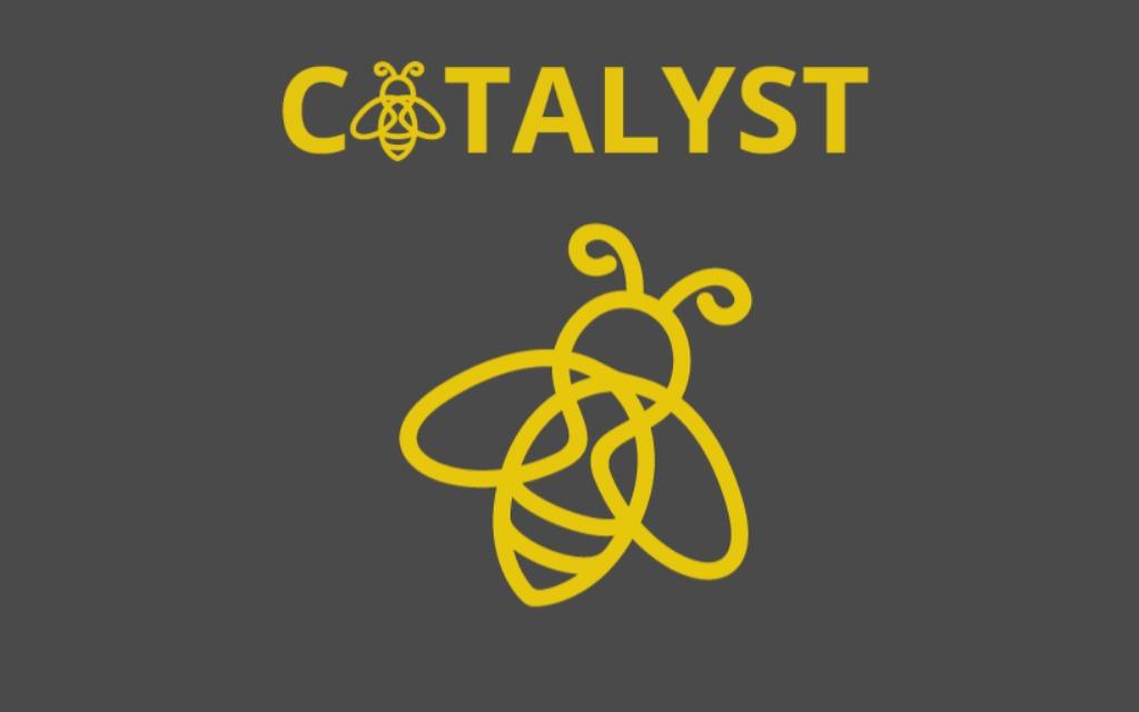 www.catalystpf.co.uk