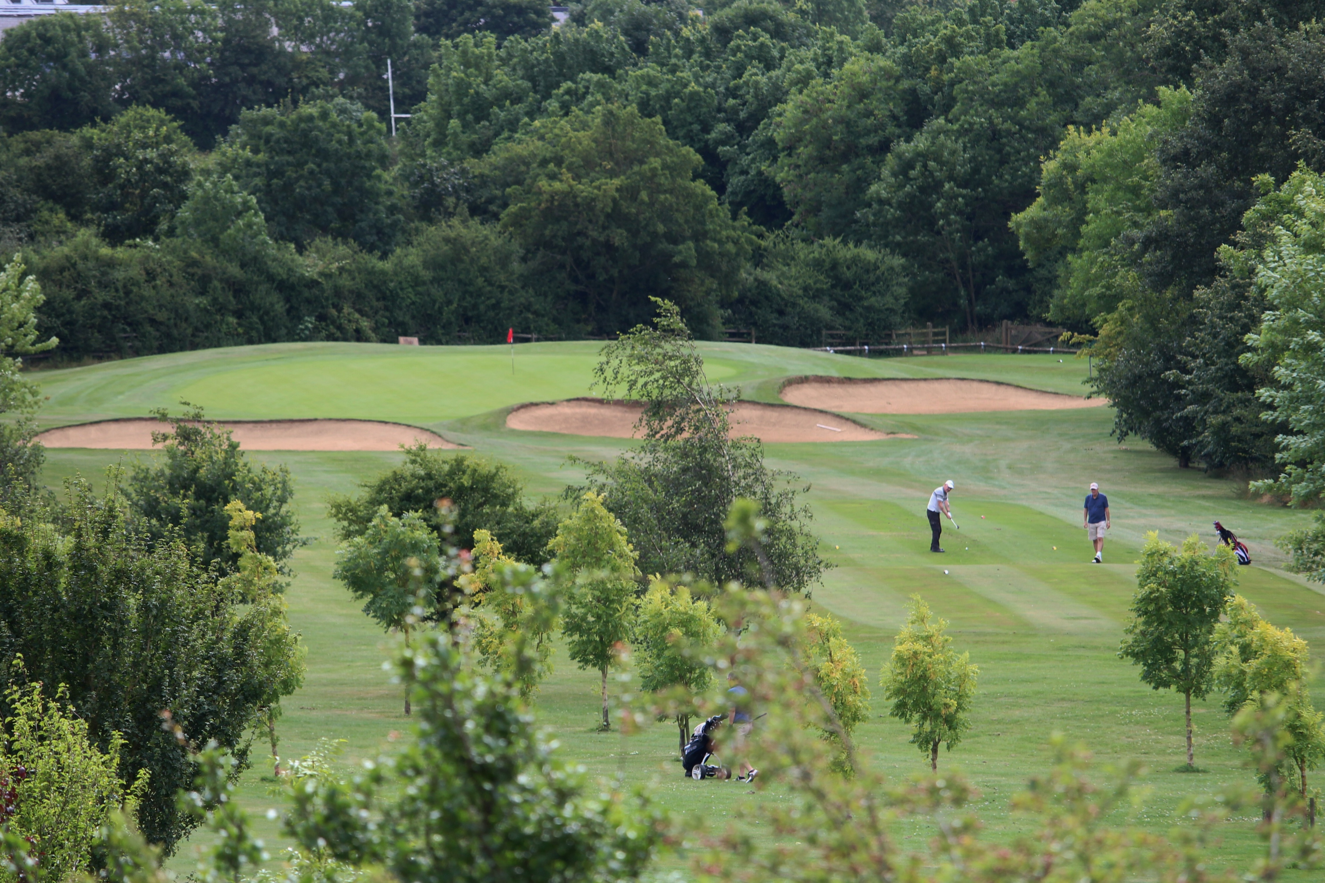 11th from above the tee
