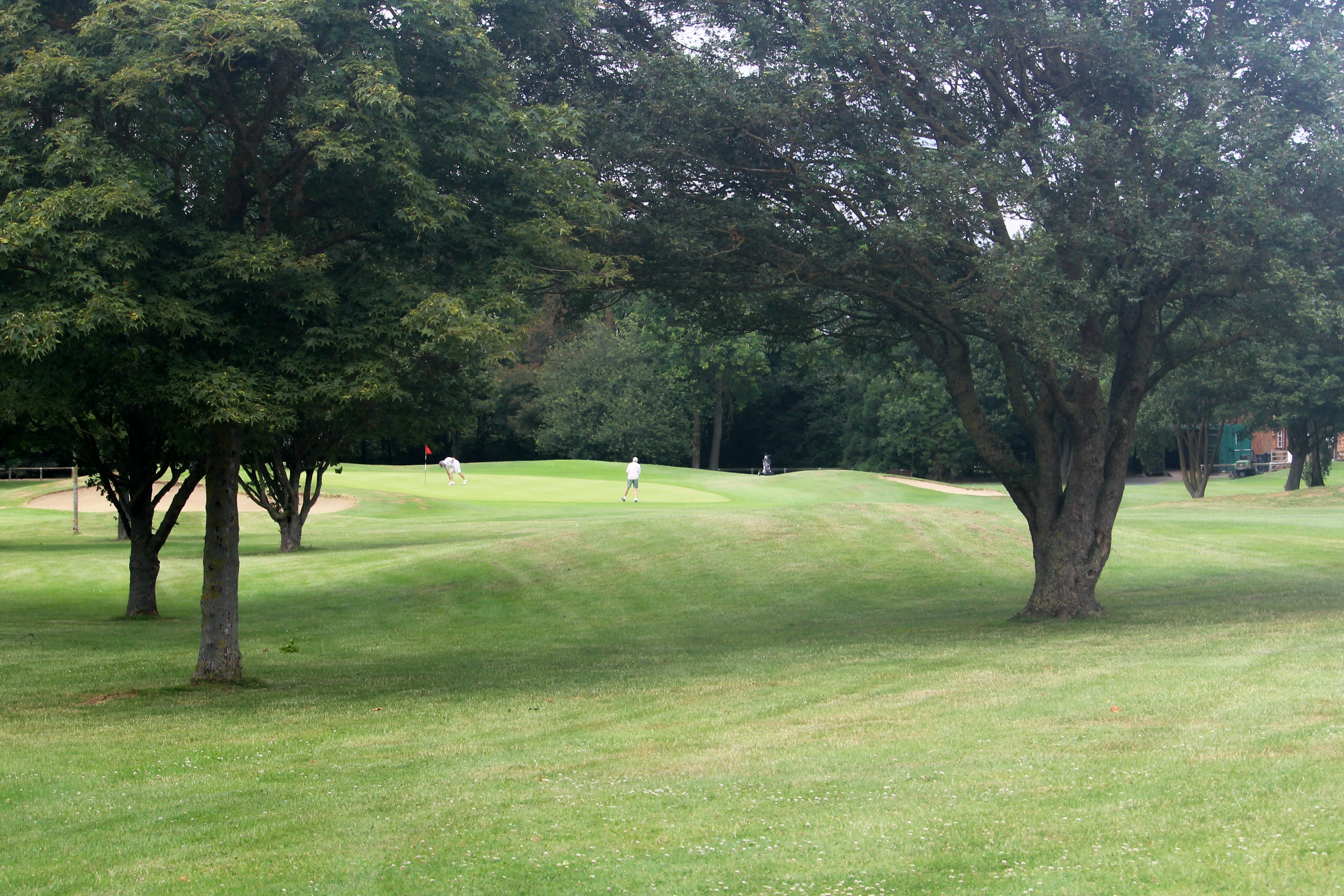 18th green from fairway