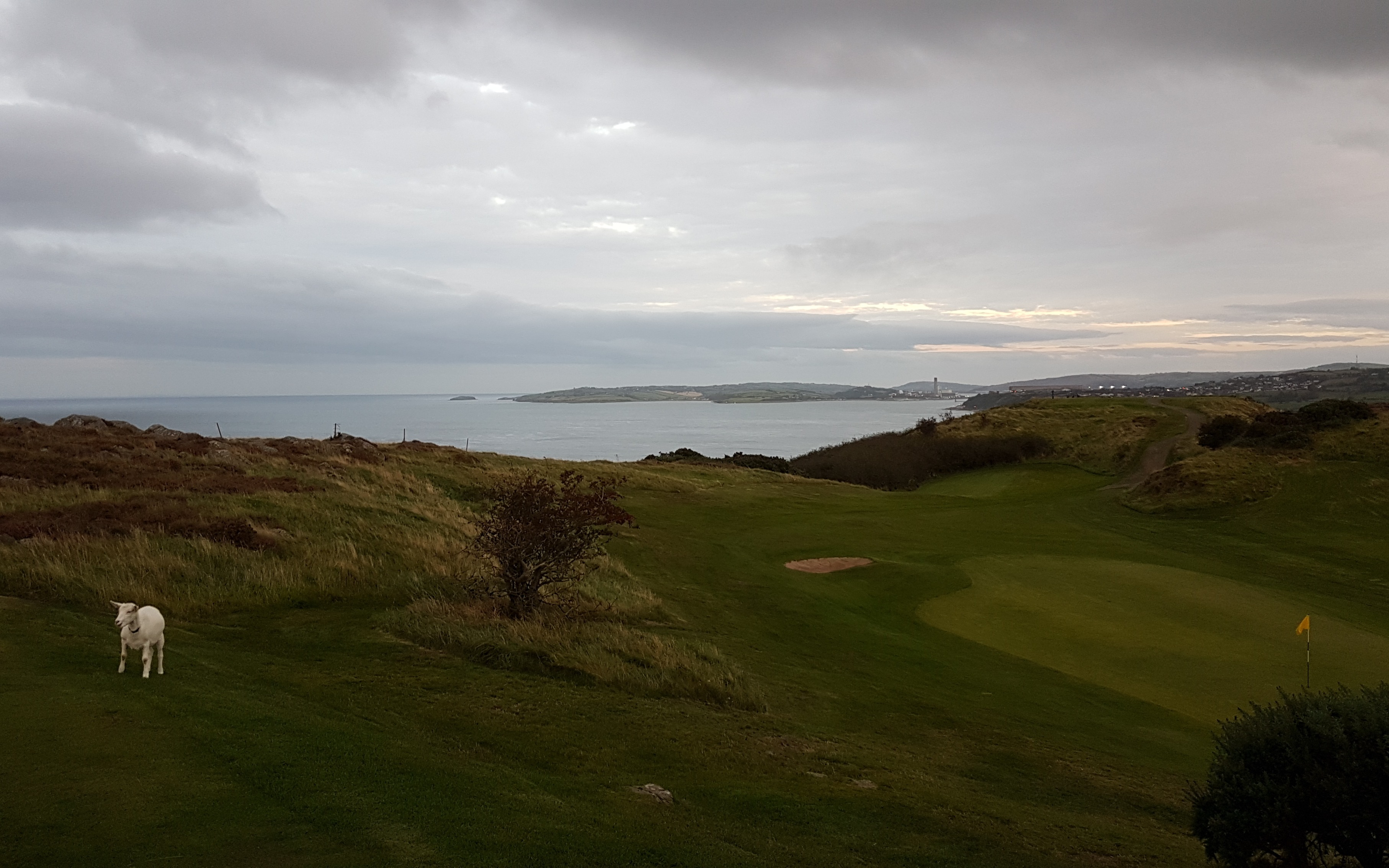 Looking from 3rd tee towards Islandmagee and Larne Golf Club