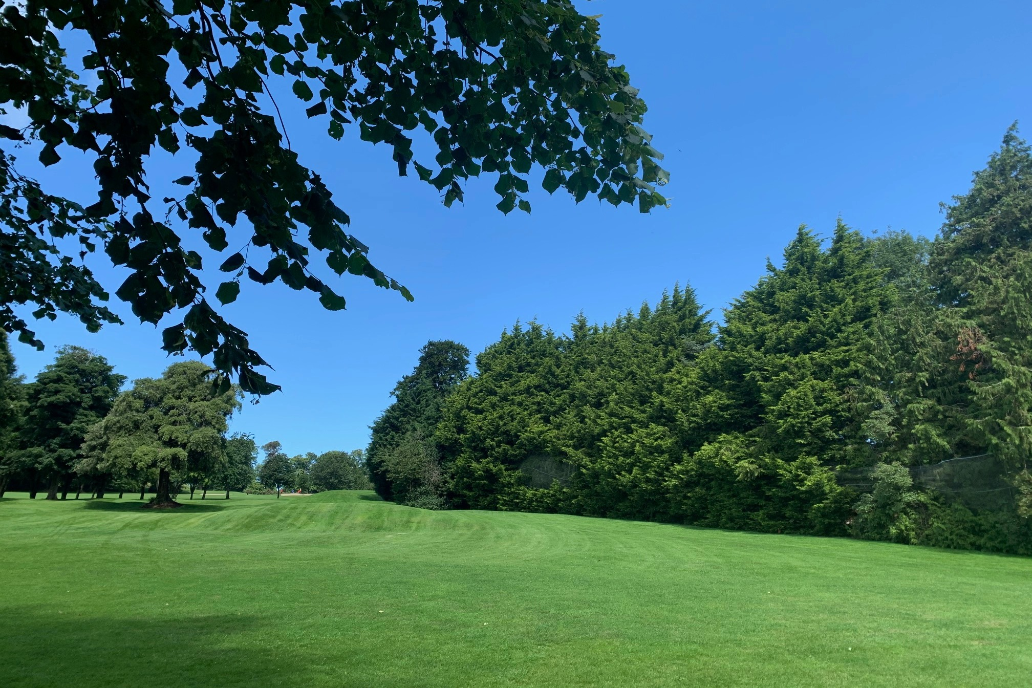 Paul Walsh's photo - Blue Skies - looking up the 9th fairway from the 10th tee